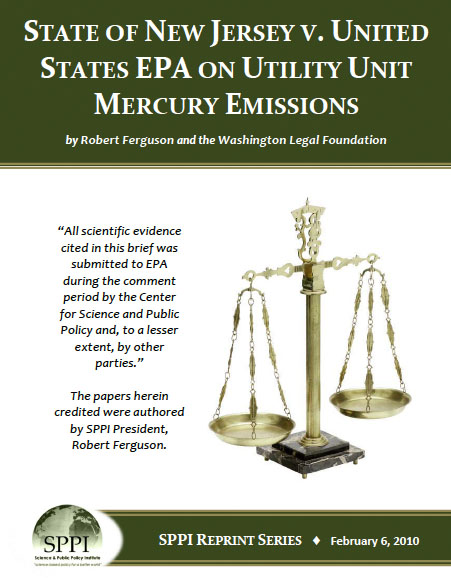 mercury emissions essay In the past decade many new sources of diffuse mercury emissions have been measured these sources significantly increase the estimates of global mercury emissions, and suggest there may be missing mercury sinks in global models mercury levels in arctic wildlife are elevated above normal levels.